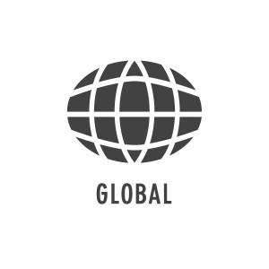 グローバルな実績